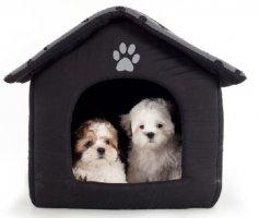 Saiba como escolher a casinha para seu cãozinho